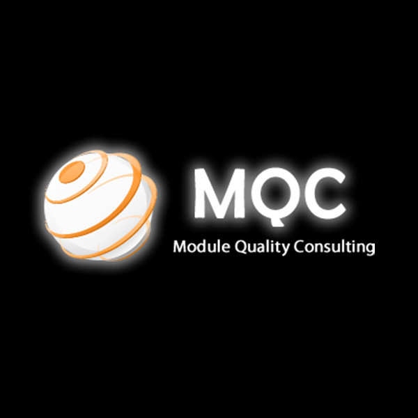 module quality consulting